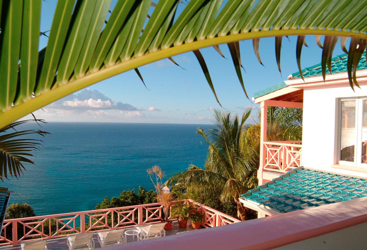 palm-house-view5517.jpg