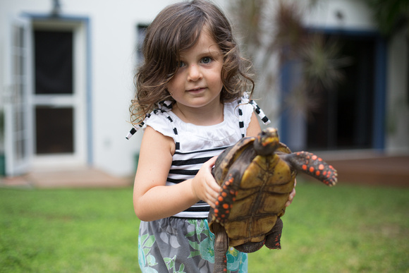 Lilac, the smaller of the two tortoises with our Daughter