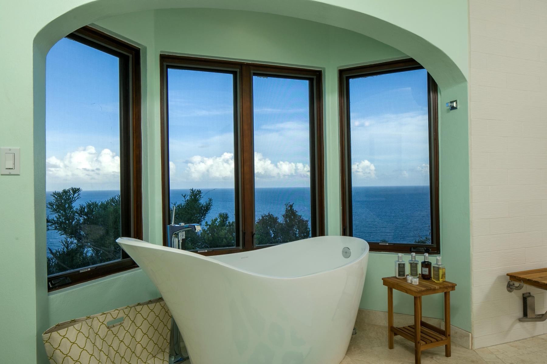 caseopeia - master suite tub.jpg
