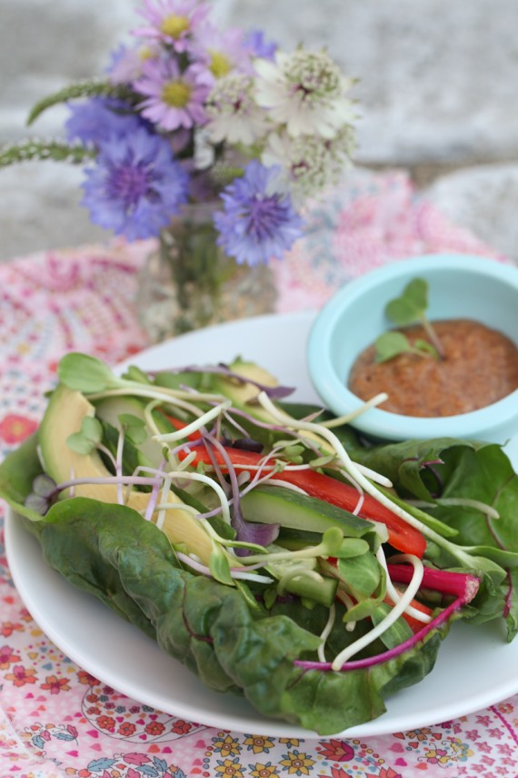 http://www.alkalinesisters.com/raw-veggie-chard-wrap-with-ancho-chili-dip-the-balancing-act-of-alkalizing-daily/3522/