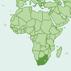southafrica_map.png
