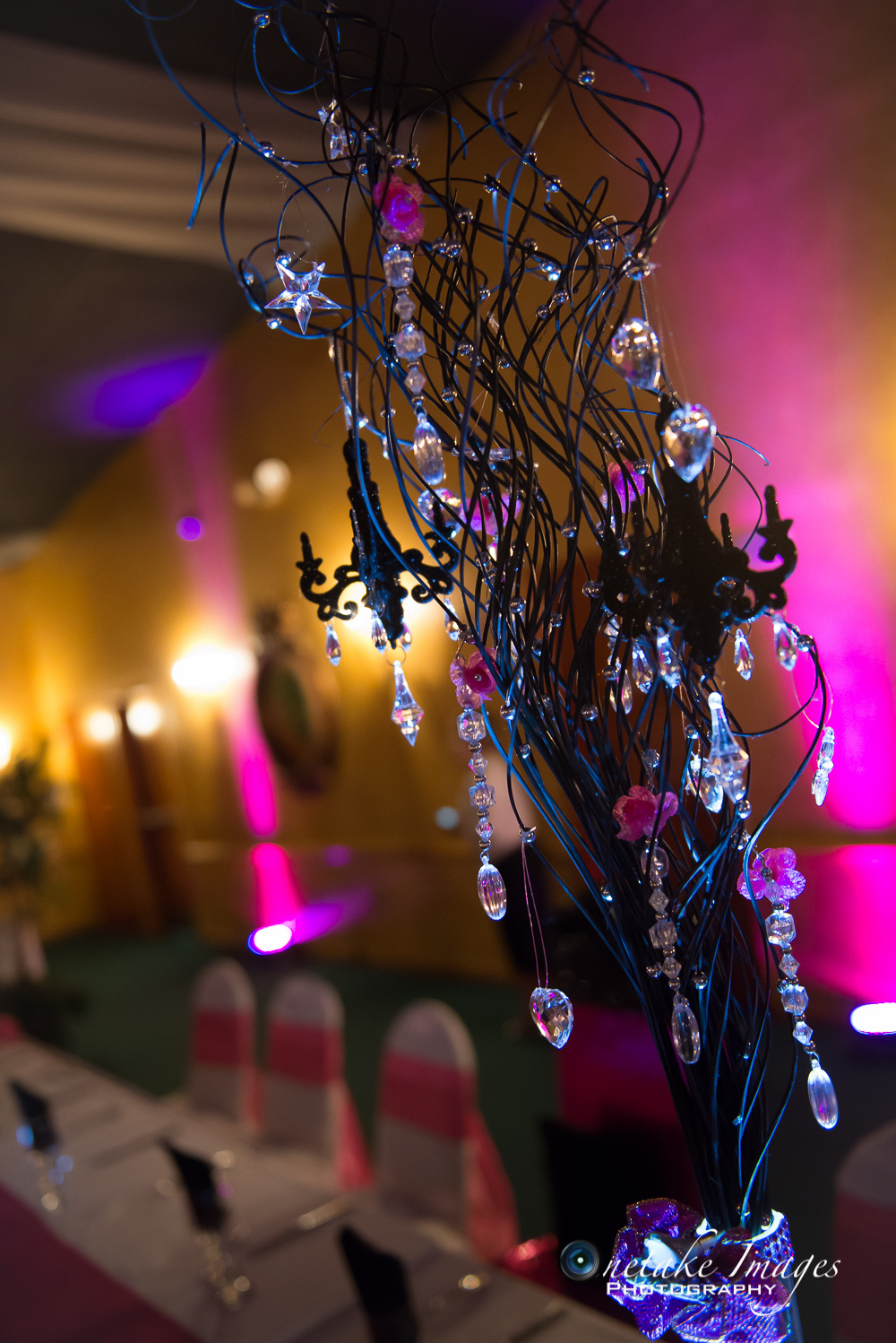 Sweet 15-Event Photography-Cape Coral-9