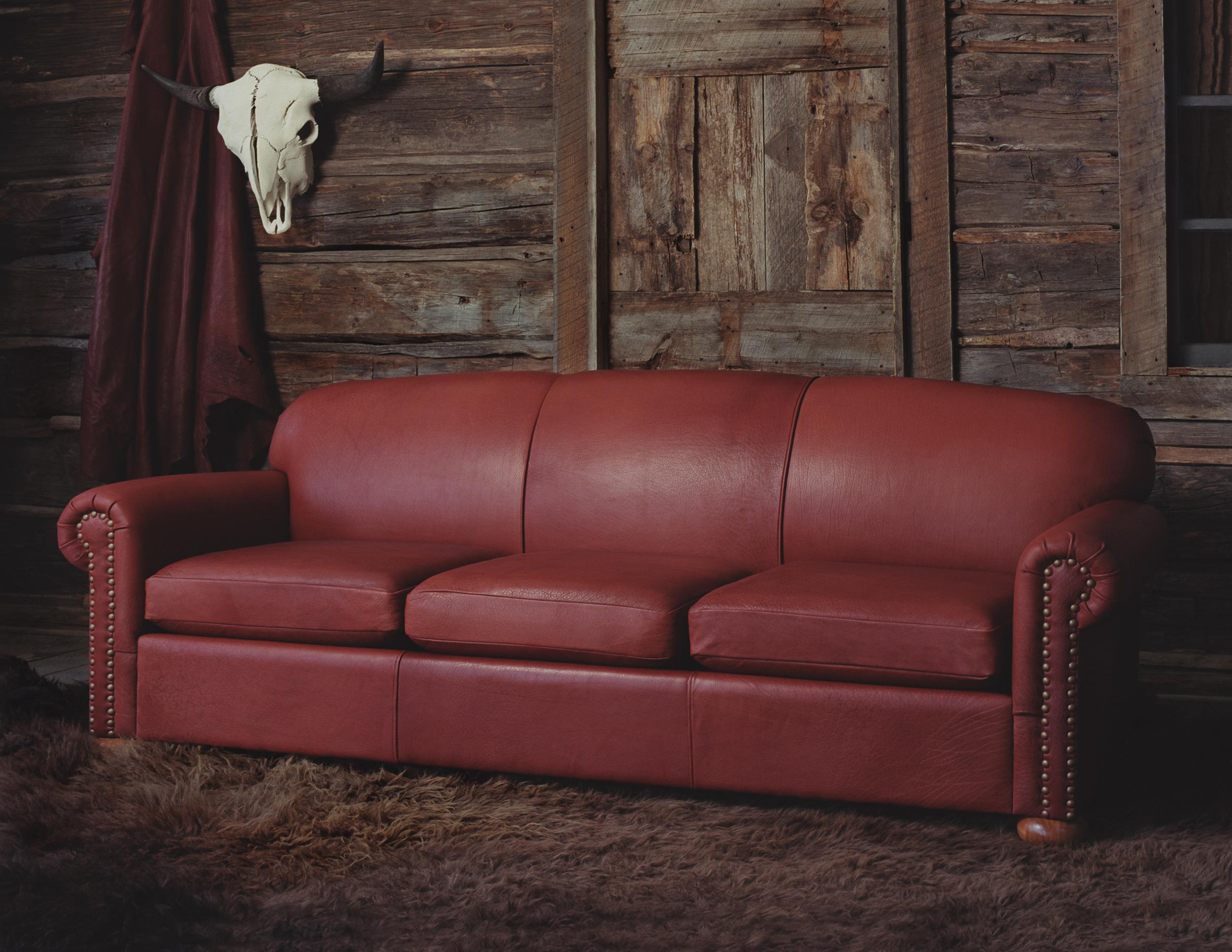 Dakota Bison Furniture