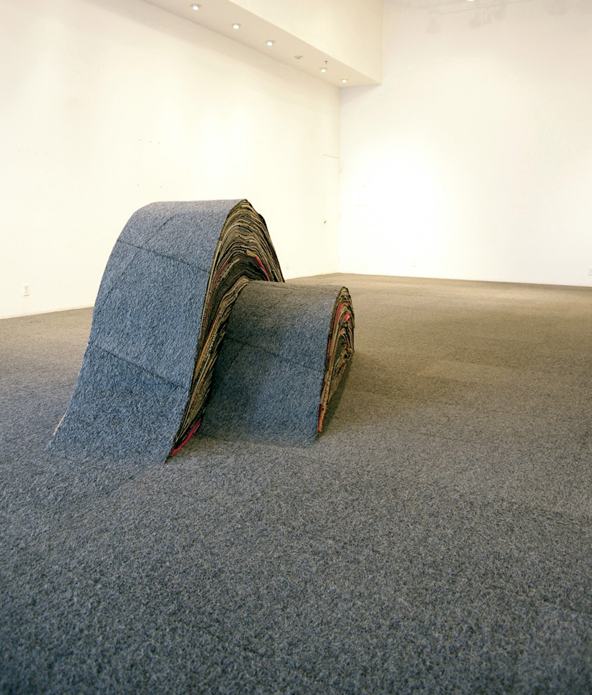 car e 021a carpet antiform1.jpg