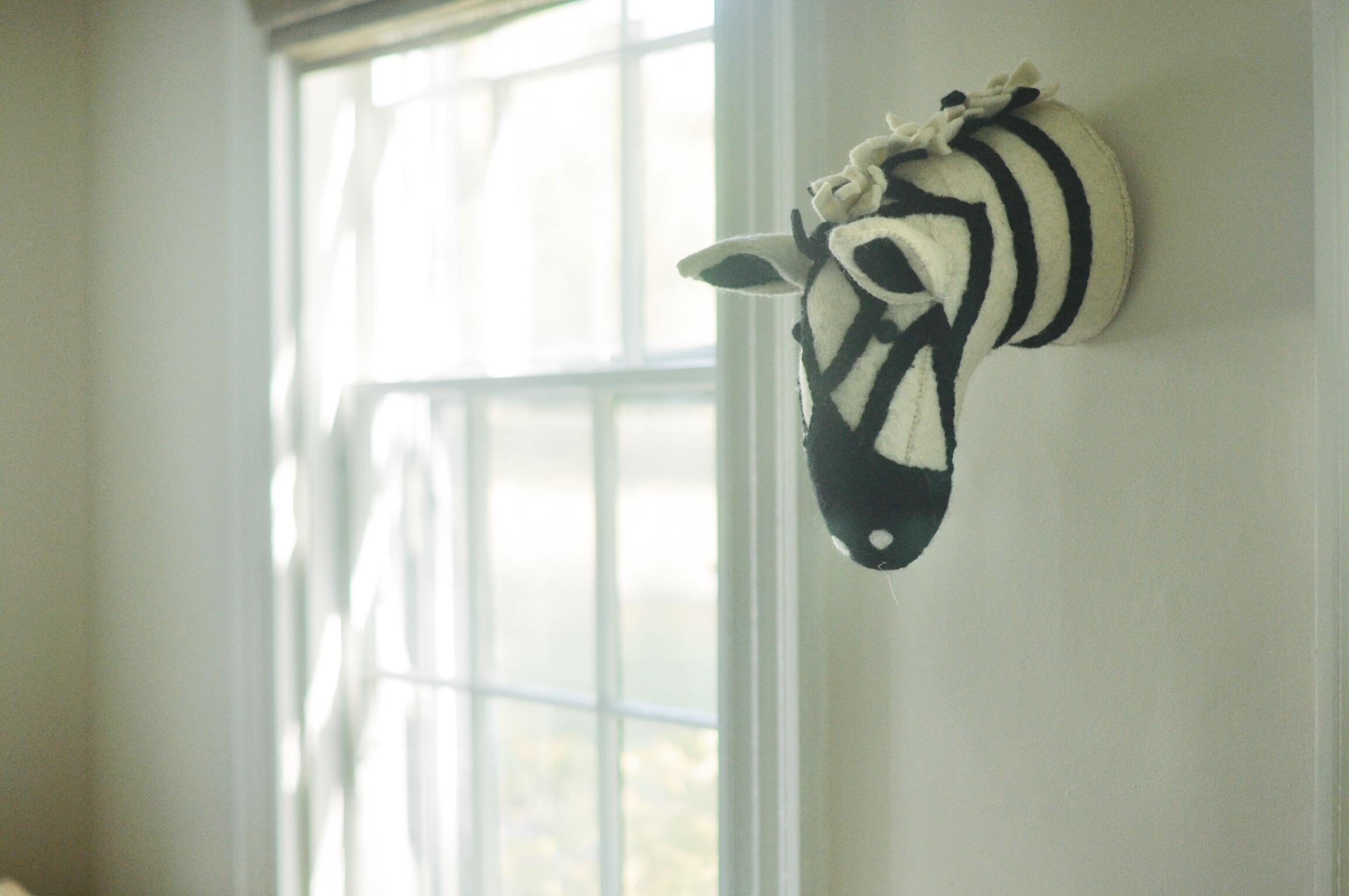 zebra safari animal wall head