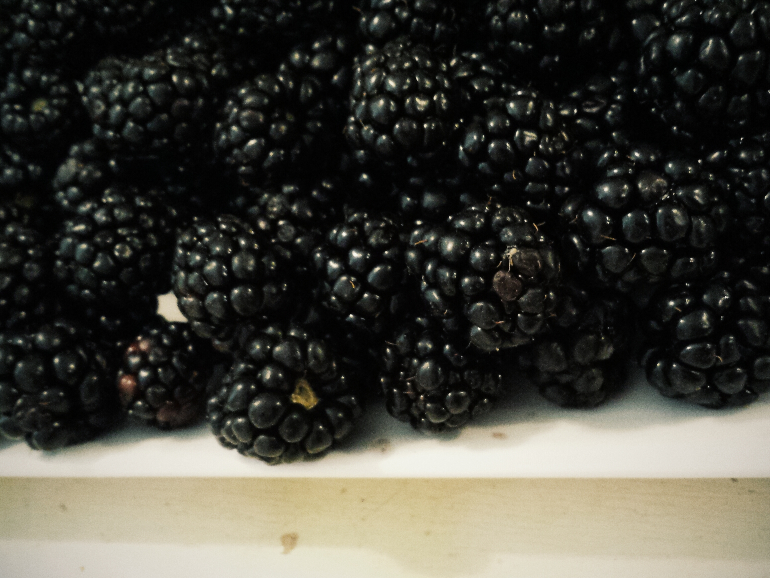 Oooh, Summer Blackberries!