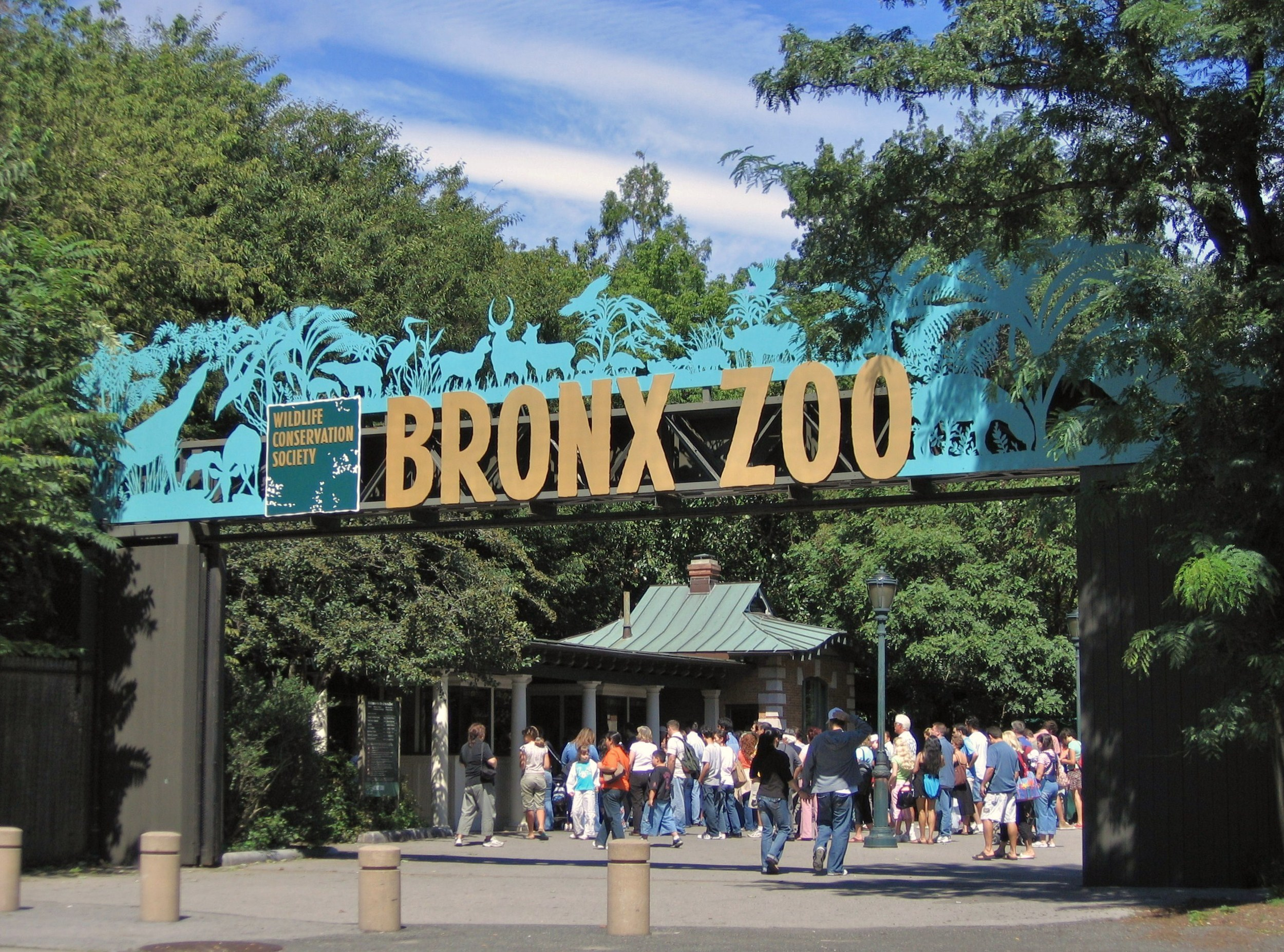 Bronx Zoo is free everyWednesday  Grab a sketchpad and draw from real life or download this activity guide for your visit.