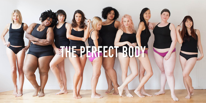 This picture was a response from the ladies of Dear Kate to an add from Victoria's Secret.  The VS add showed an array of tall, skinny, boobalicious, long haired, predominantly white models in their underwear, with the words 'The Perfect Body' written across them.  The Dear Kate team decided to create this gorgeous and amazing photo in response.