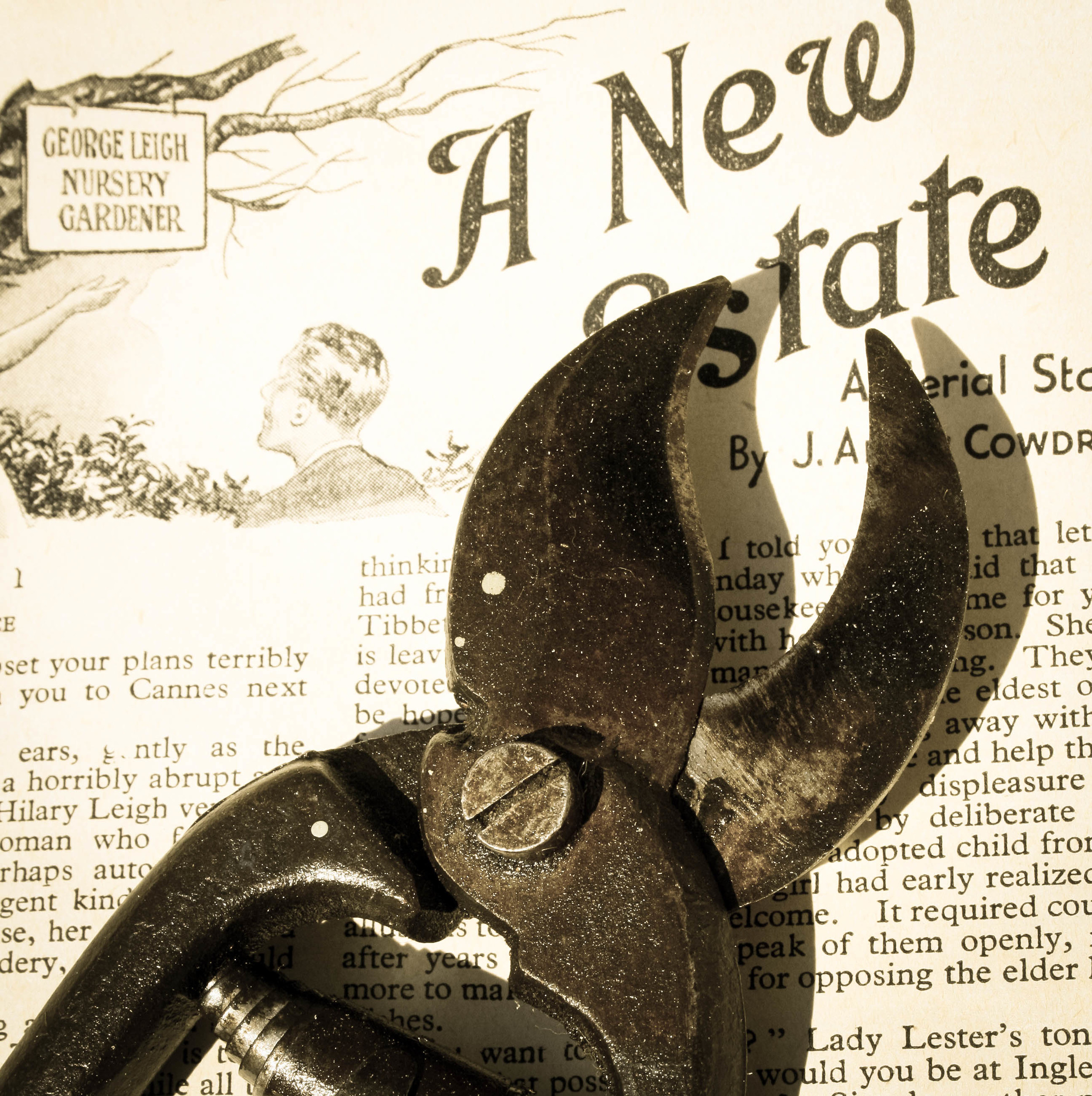 secateurs-2.jpg
