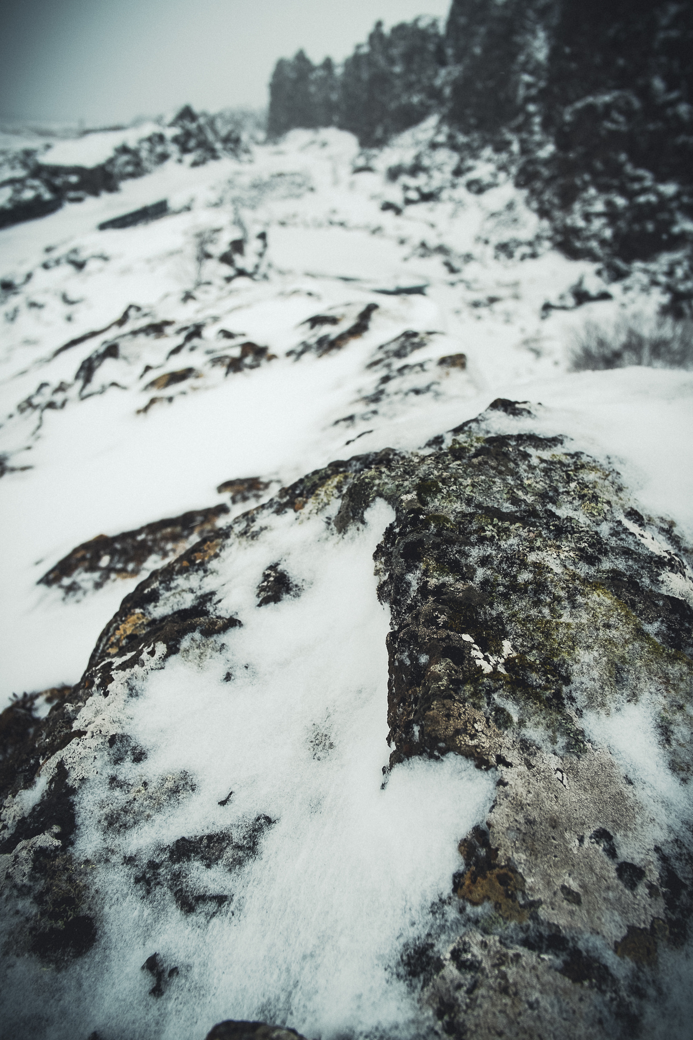 textures_of_iceland-3-(ZF-5665-08154-1-003).jpg