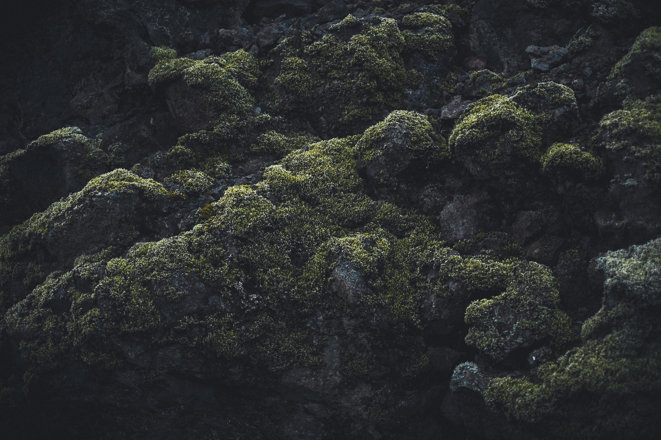 textures_of_iceland-5-(ZF-5665-08154-1-005).jpg