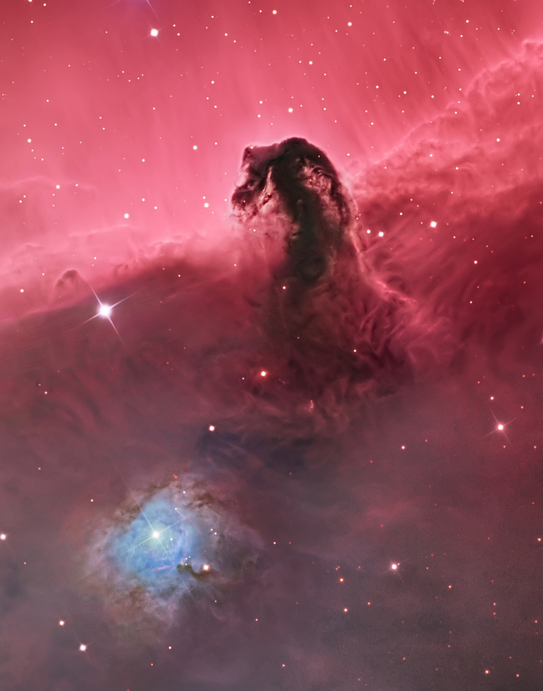 Deep Space winner:The Horsehead Nebula (IC 434) by Bill Snyder (USA)