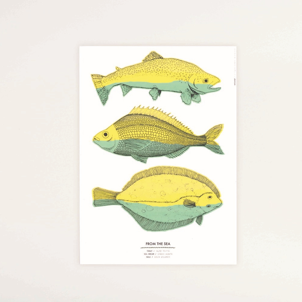 Fish Print,A3, £18   Vibrant risograph print of hand drawn illustrations of trout, sole and sea bream, inspired by an old science poster.