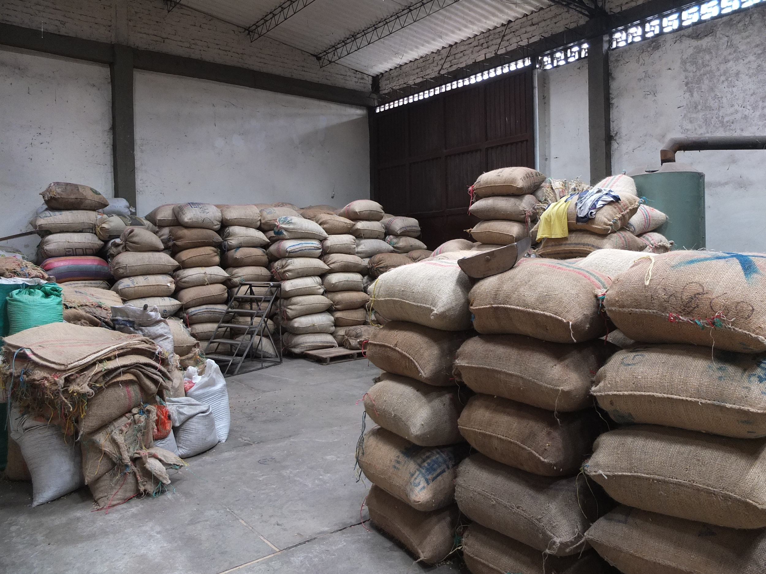 coffee waiting for export.JPG