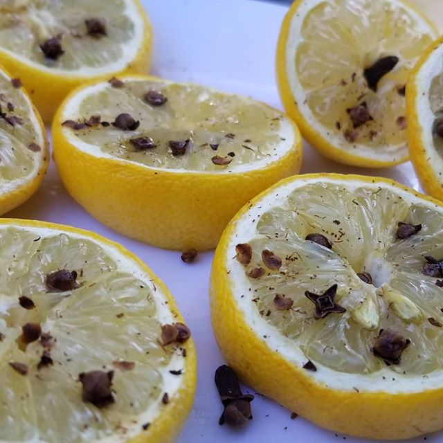 Need mosquito repellent? Try stuffing some cloves inside of lemons; it works! Place them in a plate and spread the love!  #naturalbugrepellent  #mosquitorepellent  #lemonandcloves