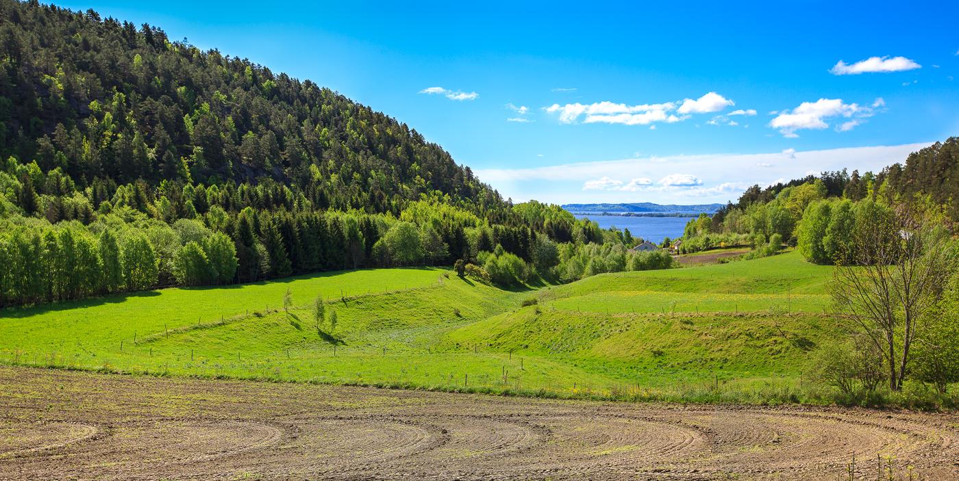 Fantastisk utsikt fra kystveien på Vestfolds nordre riviera.