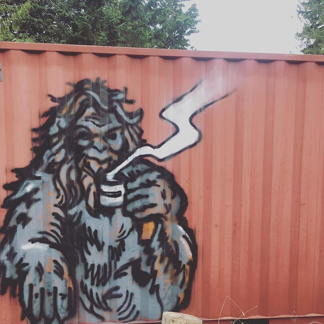The Mt. Maxwell Sasquatch making a larger-than-life appearance at our entrance, thanks to some cans of spray-paint and a talented friend! 🤩☕️🎨 #sasquatch #mtmaxwellcoffee
