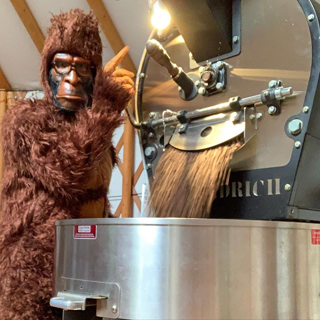 Happy Halloween y'all! #saltspring #coffee #sasquatch