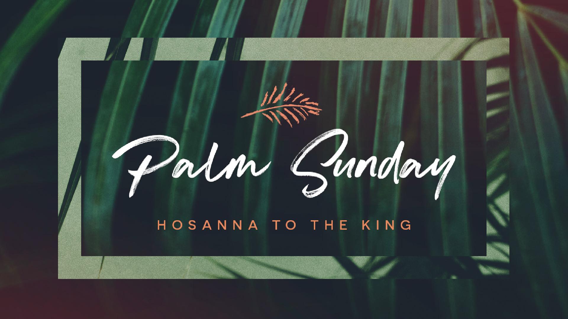 Palm_Sunday-Wide.jpg