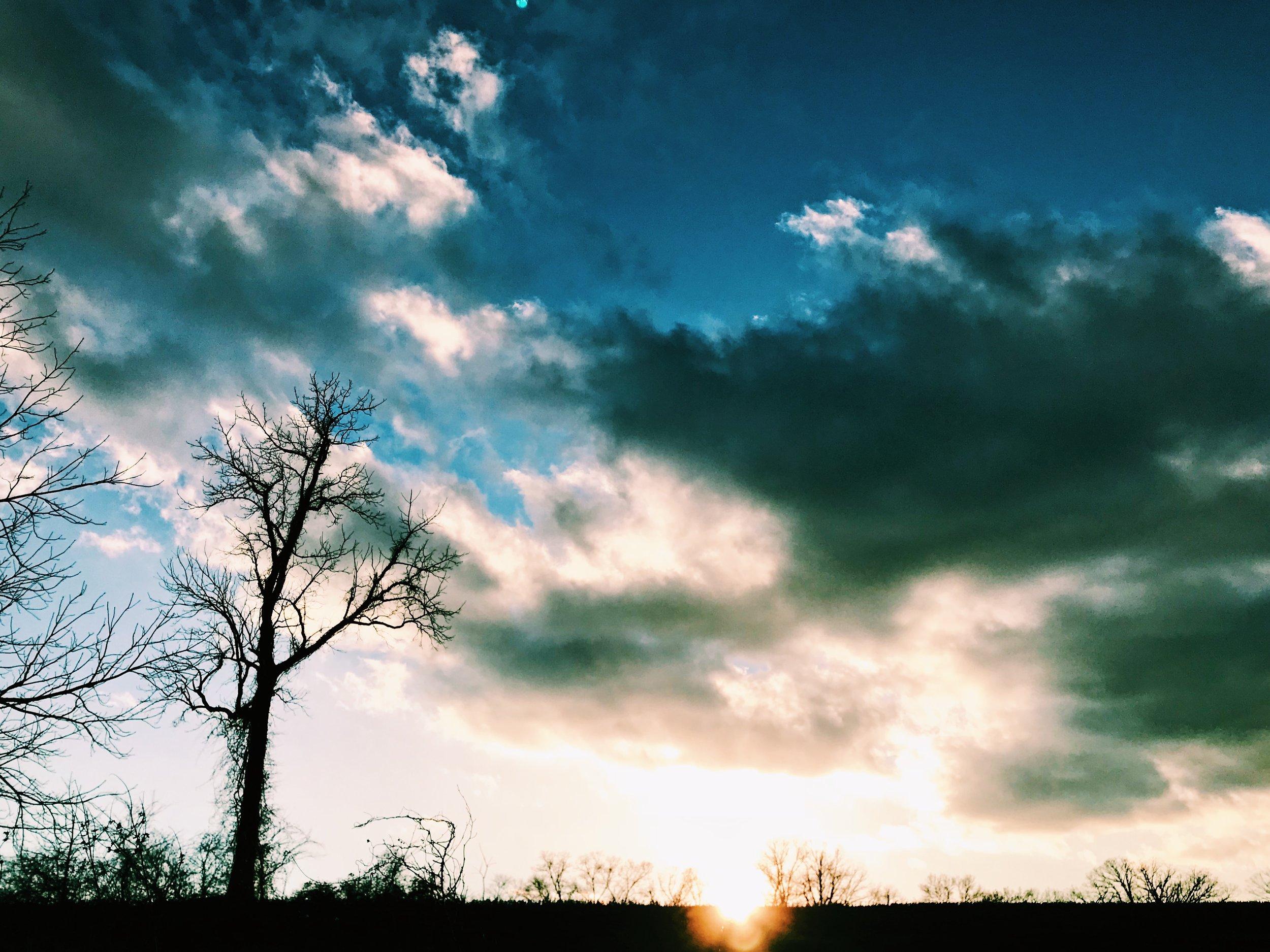 Winter Farm Sunset.jpg