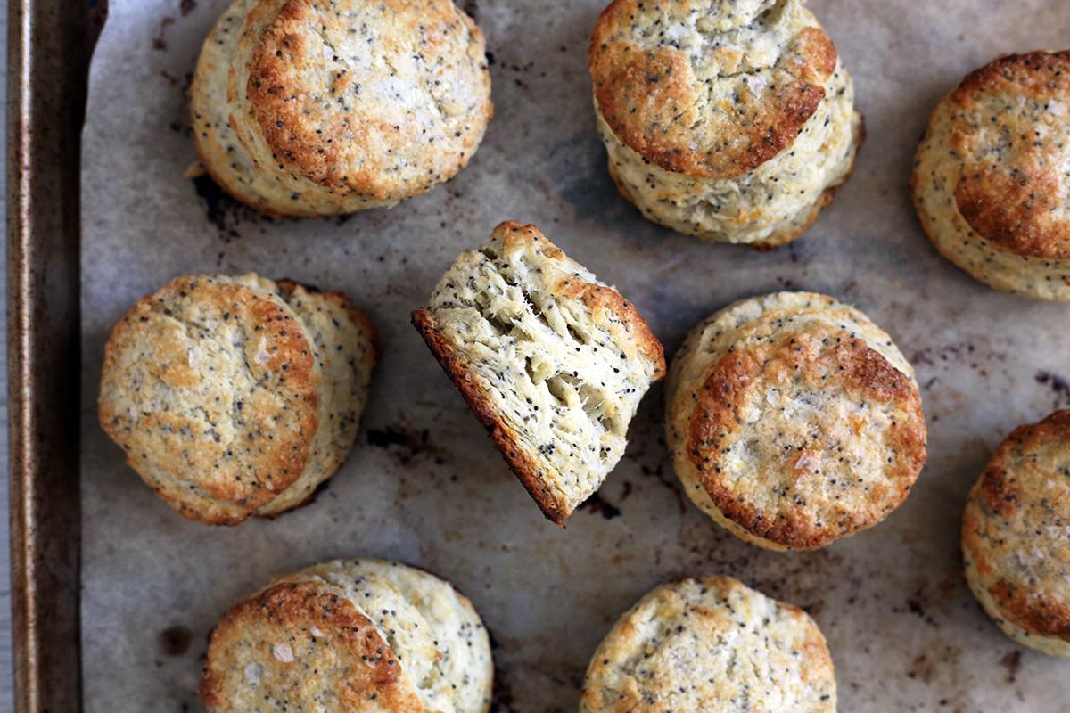Lemon Poppyseed Biscuits-4.jpg