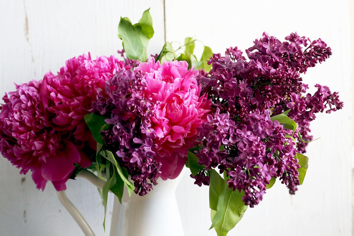 Lilacs and Peonies.jpg