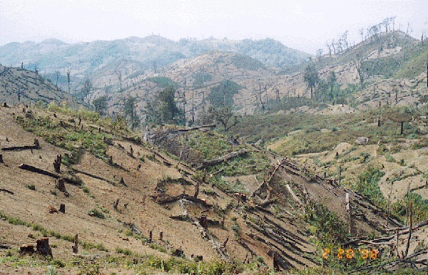 High dependency on wood for cooking fuel coupled with inefficient cooking methods has contributed significantly to the country's alarming deforestation rate and high death toll due to indoor air pollution.