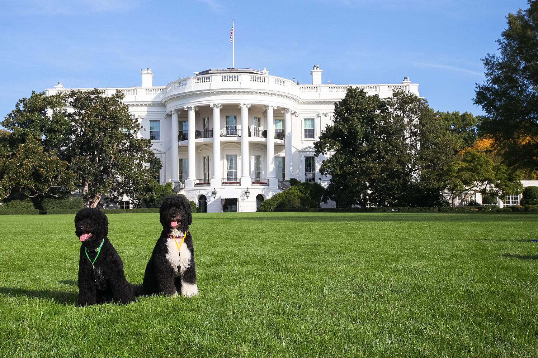 1-PB-whitehouse-color-101-1500w.jpg
