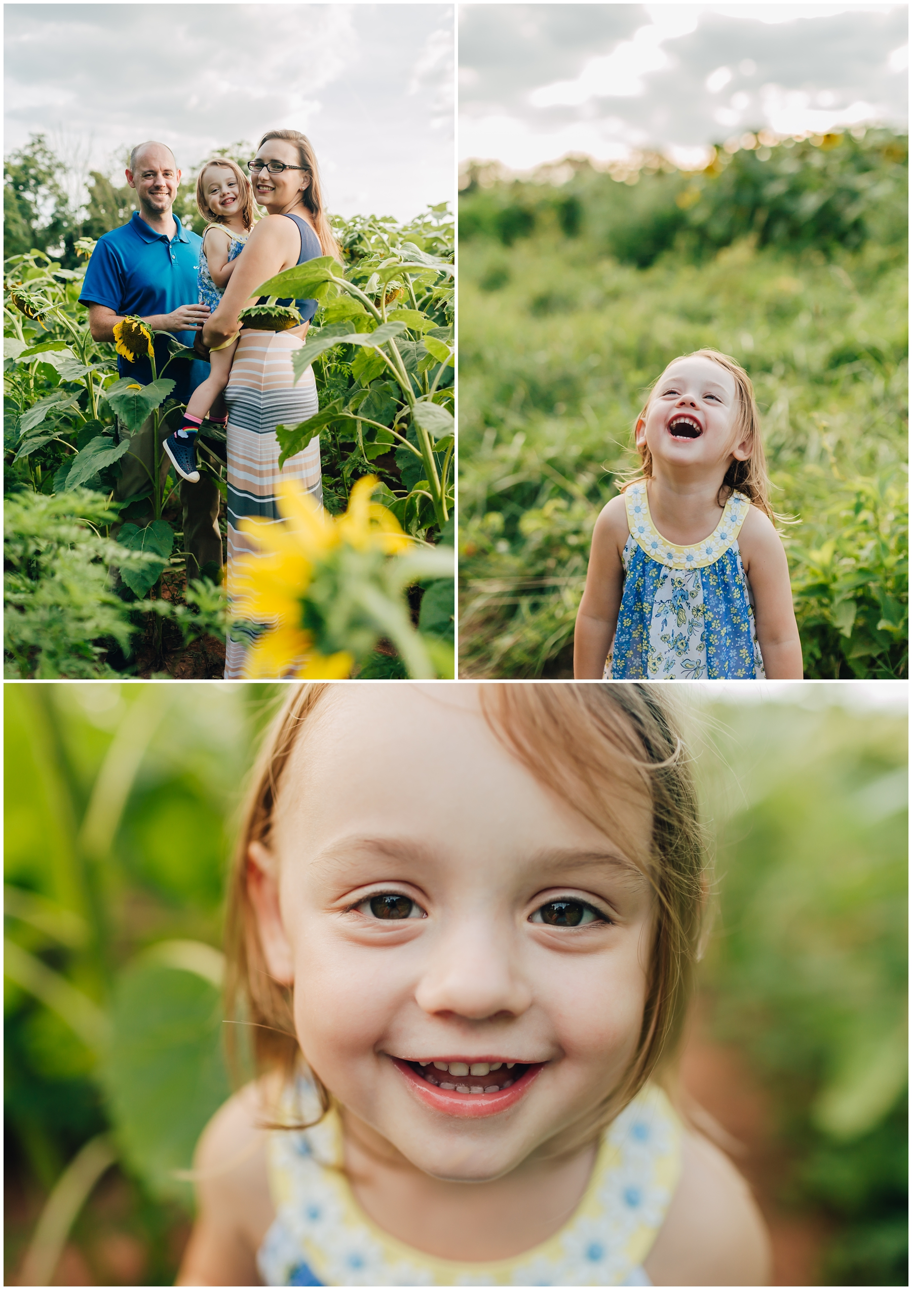 mckee-beshers-sunflowers-family-photography-2.jpg