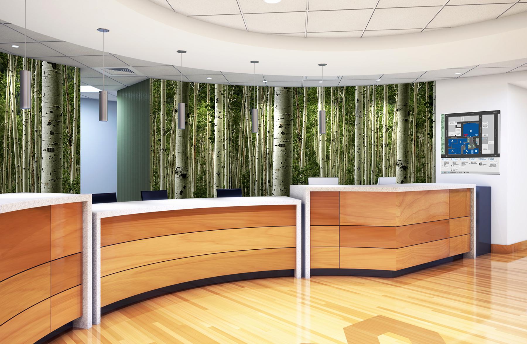 Aspen Forest Mural-Hospital Reception.jpg