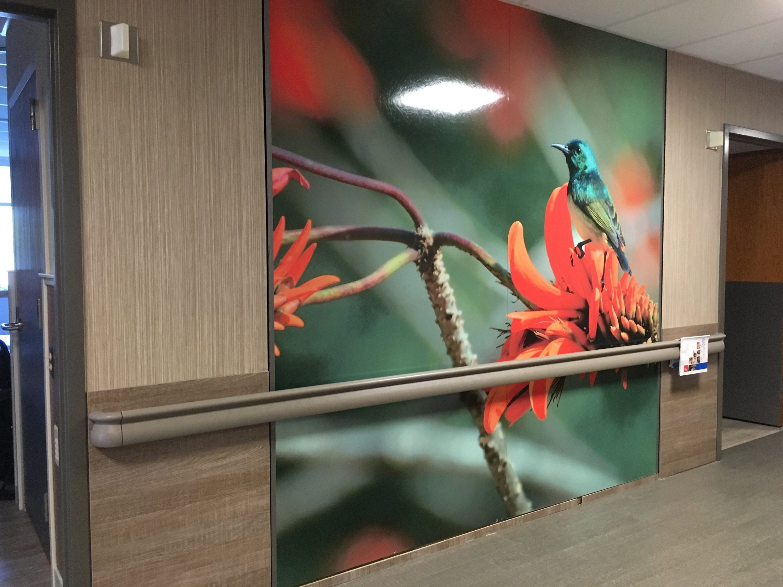Aparna-Bonda_Fusion-Hospital-3-e1511898672659.jpg