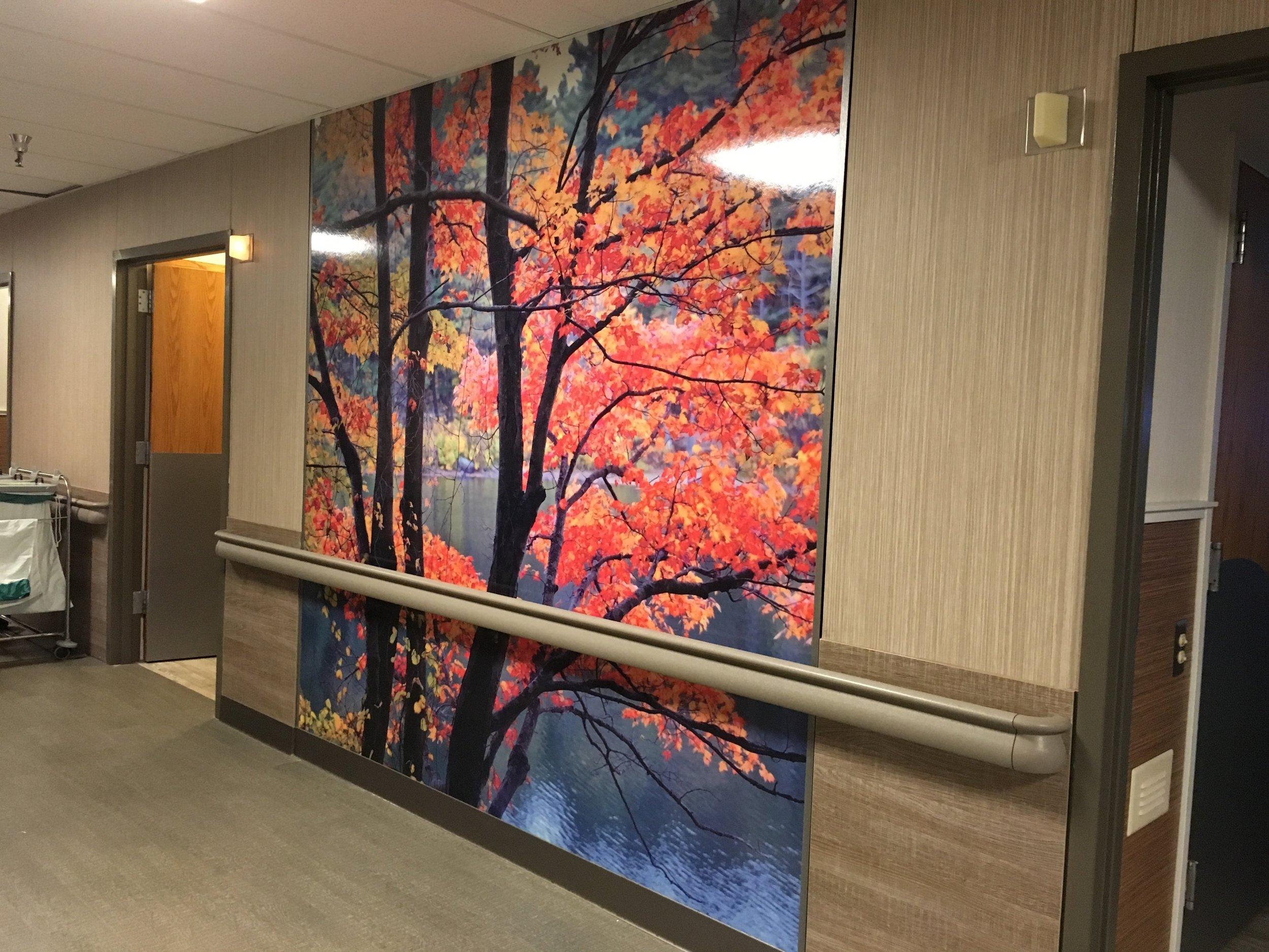 Aparna-Bonda_Fusion-Hospital-7.jpg