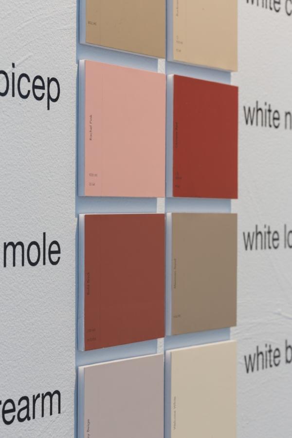 """""""ColorSnap"""" (detail)"""