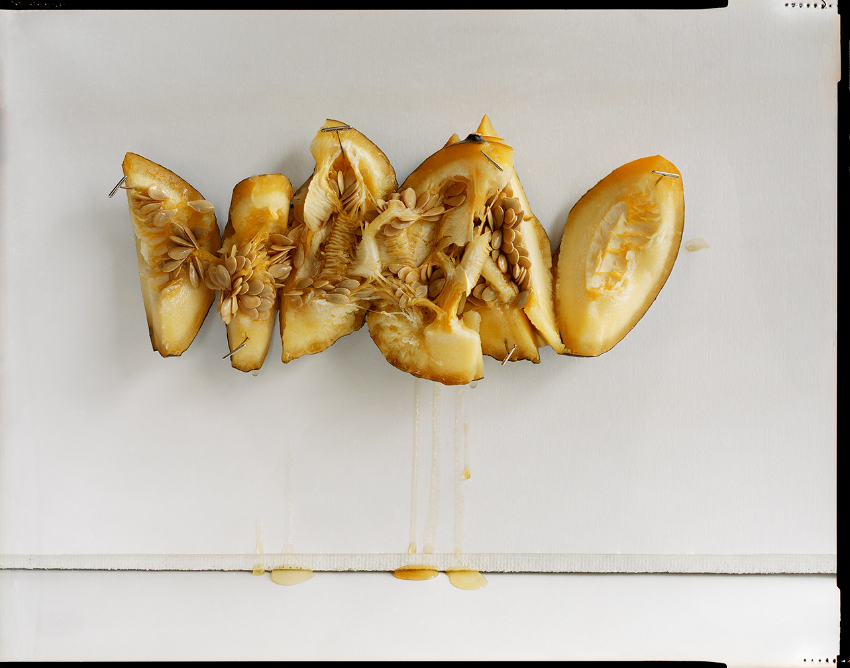 Roasted Gourd (2013)