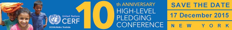 CERF 10-year anniversary web banner