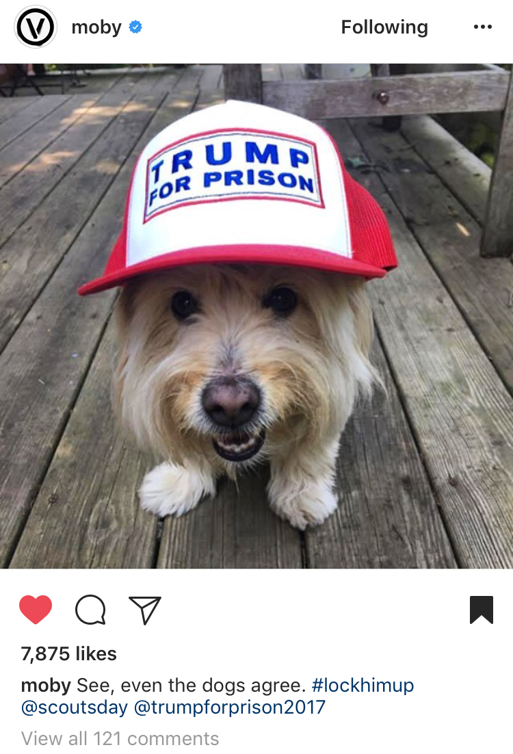 Moby reposts my doggie! - Musician/activist