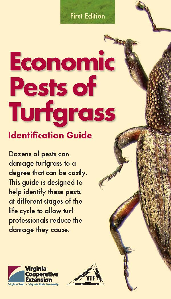 Economic Pests of Turfgrass