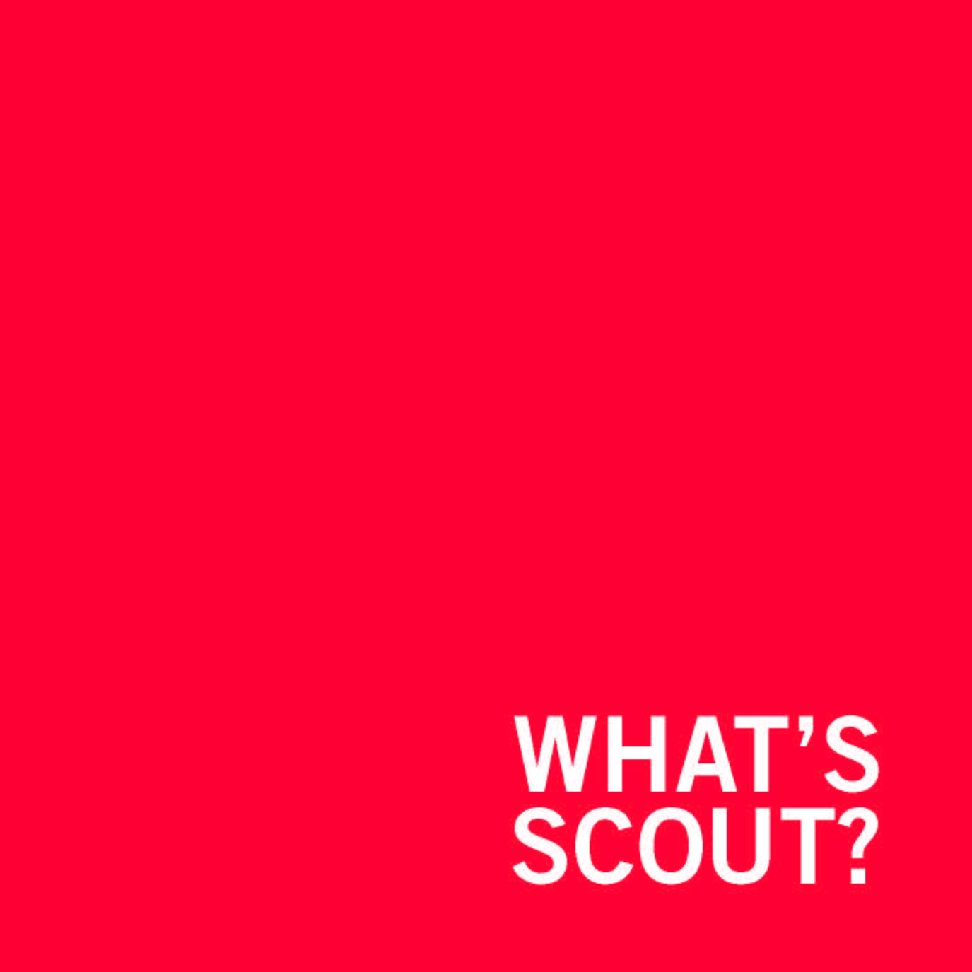 What's Scout? by Jodi Miller