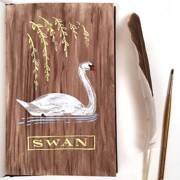 Swan © Angela Staehling