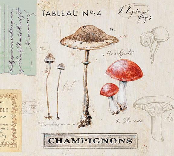 """Nature's Mushrooms"" ©  Angela Staehling"