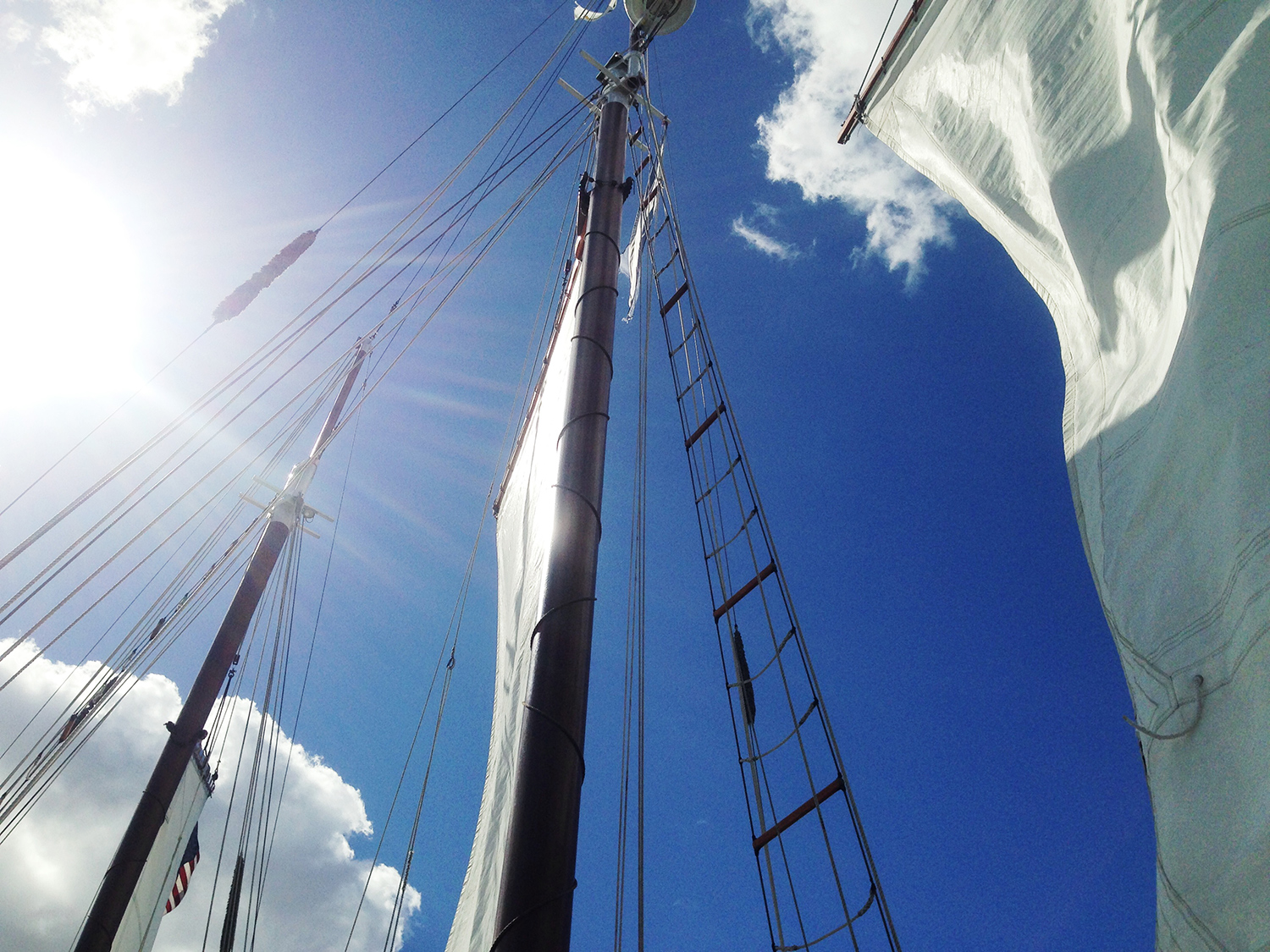 Sun on the masts.