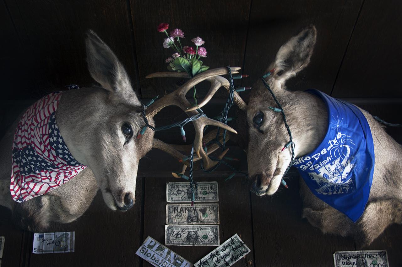 Slots, Nevada
