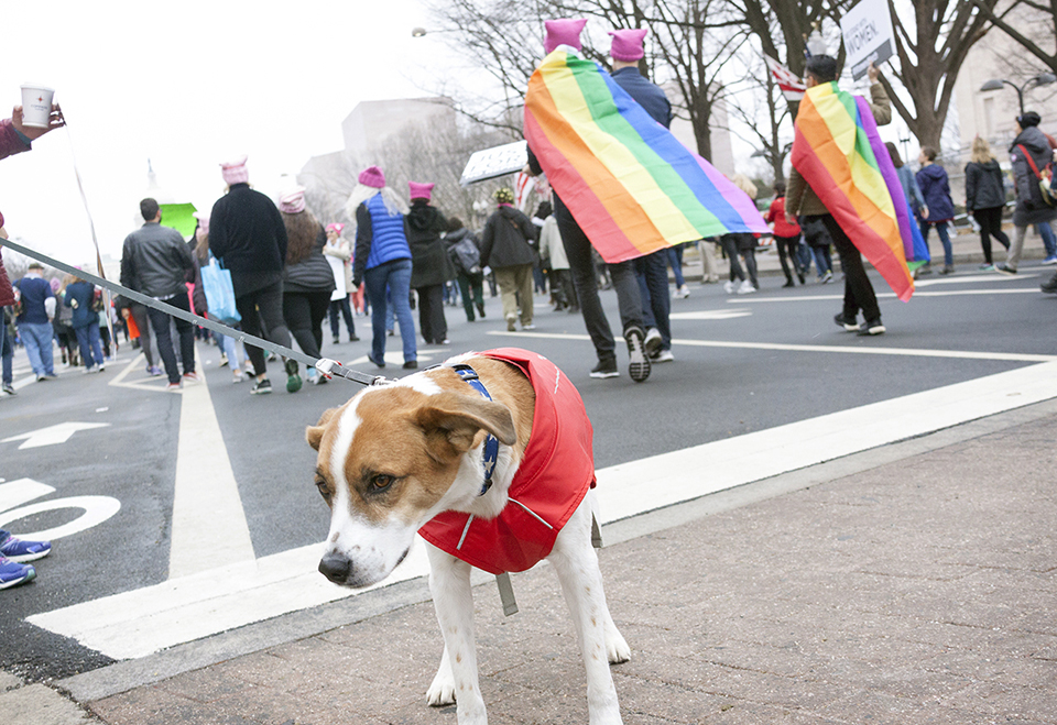 Woman's March ll.jpg
