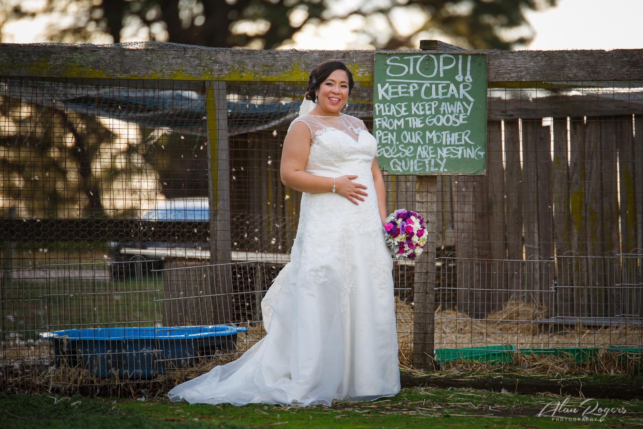 wedding-mother-goose.jpg