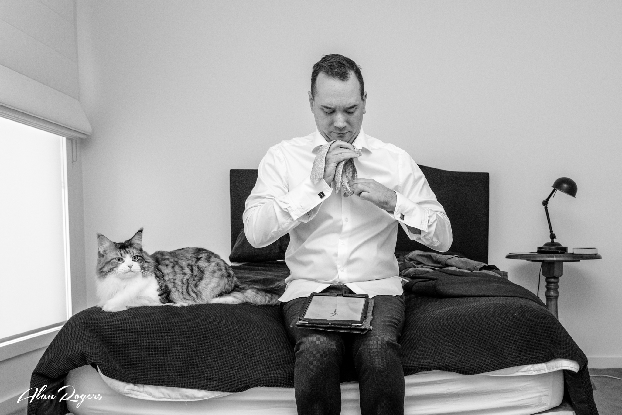 A Groom, his cat, an iPad, putting on the tie.