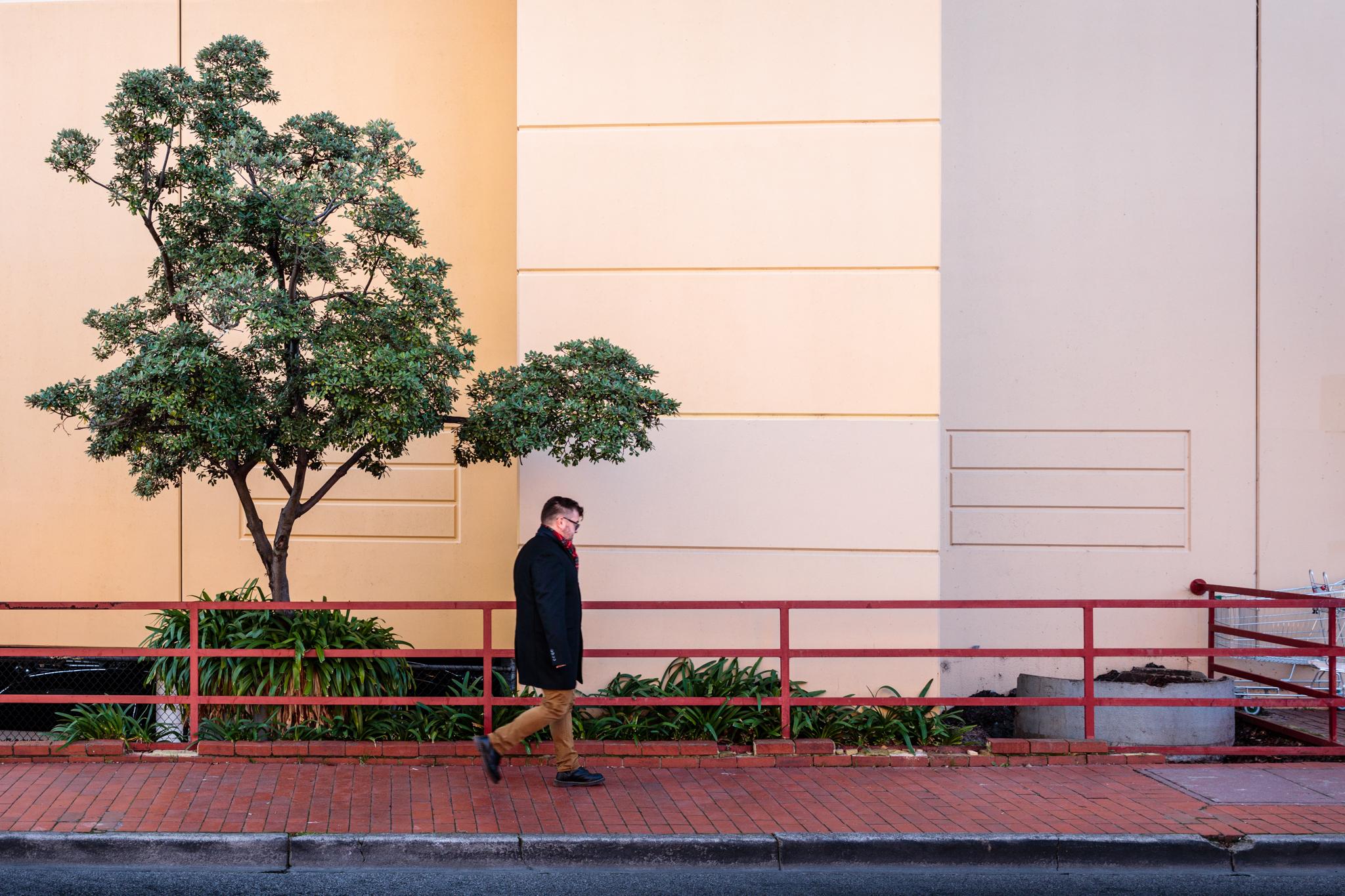 man-walking-past-tree.jpg