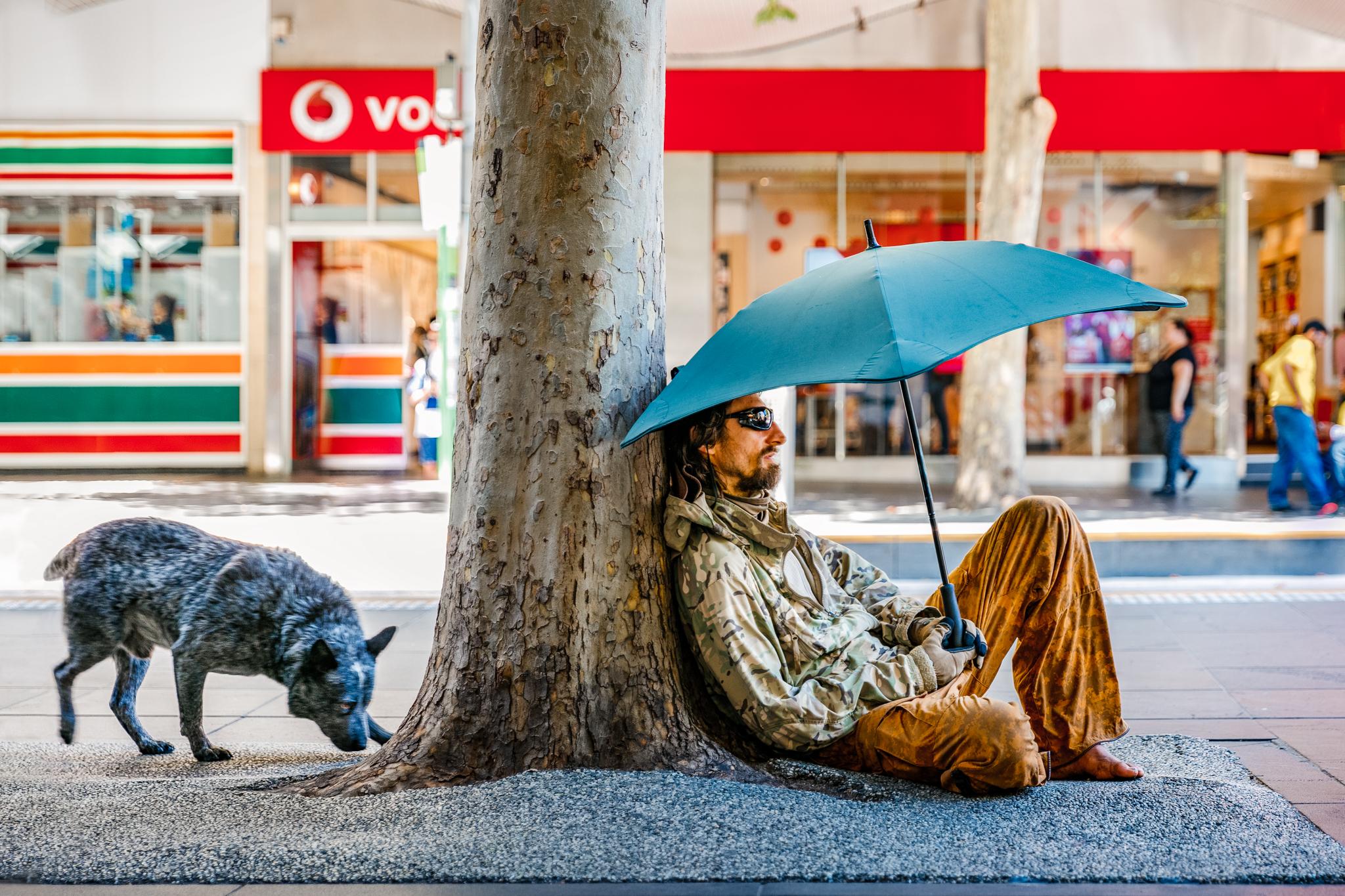 street-dog-homeless-man-umbrella.jpg