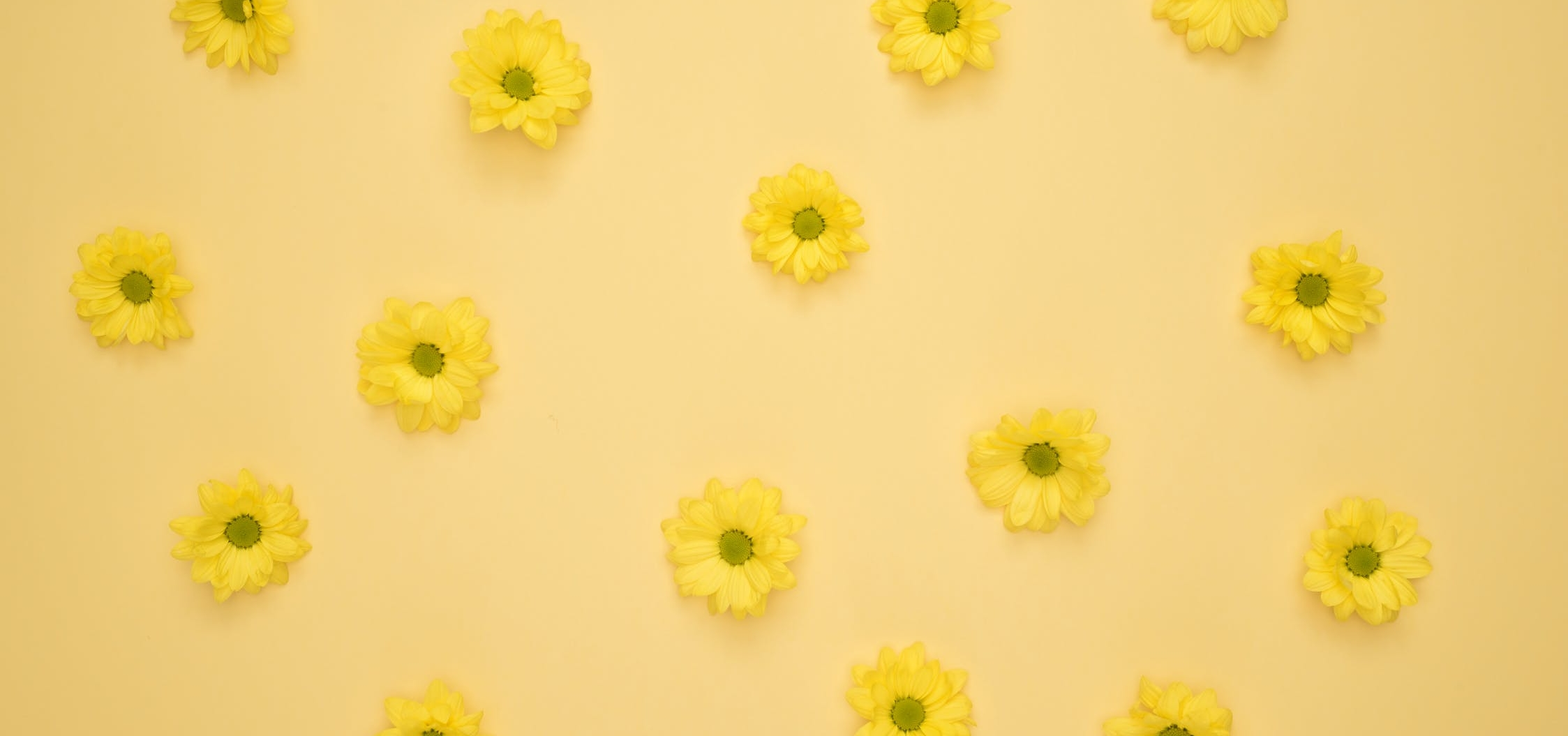 pexels-photo-1037998.jpeg