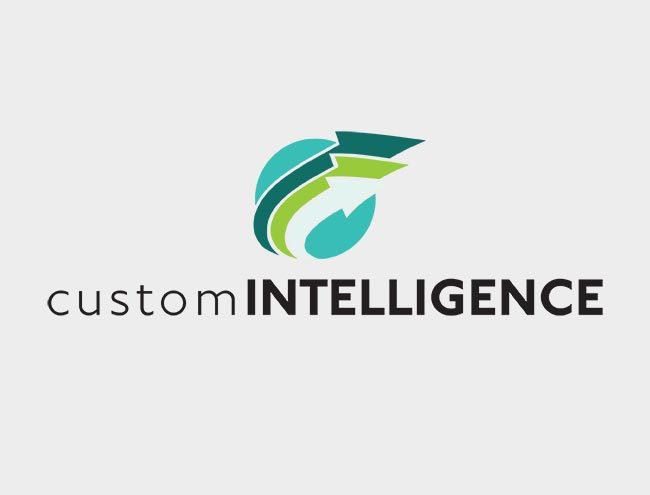 custom-intelligence.jpg
