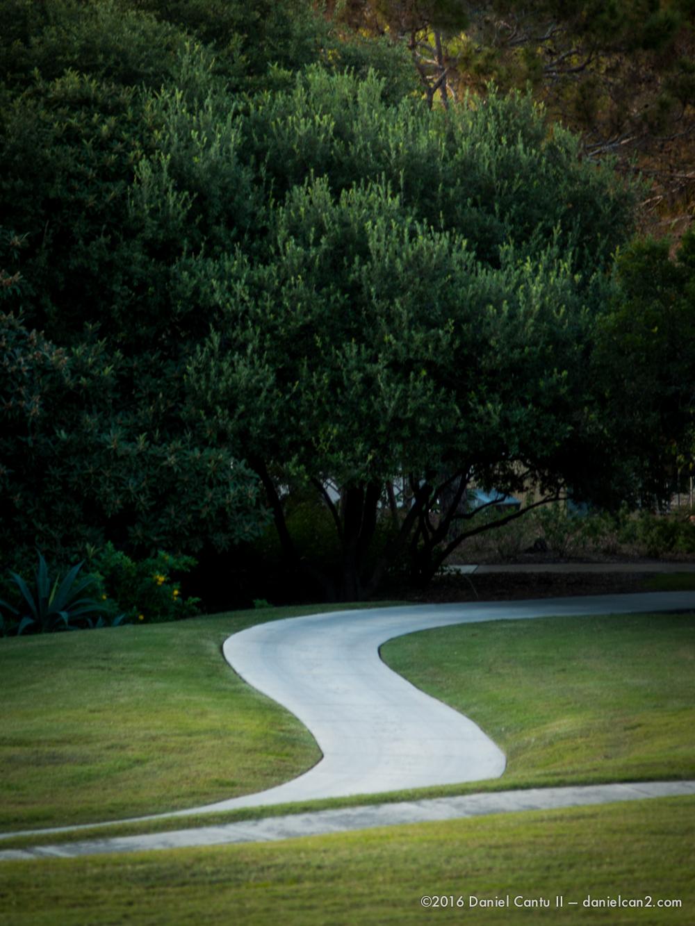 Daniel-Cantu-II-Botanical-Gardens-Oct-2016-57.jpg
